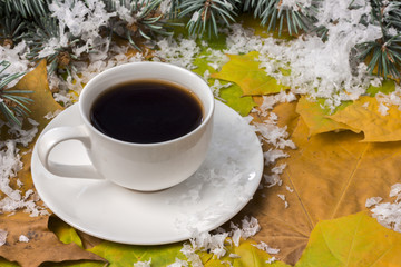 a hot drink in autumn, branches of spruce