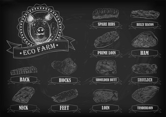 Pork pig side carcass cuts cut parts info graphics scheme sign