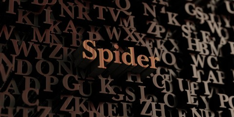 Spider - Wooden 3D rendered letters/message.  Can be used for an online banner ad or a print postcard.