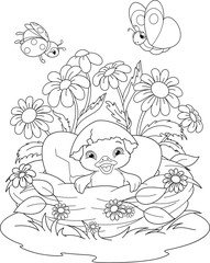 Duckling Coloring Page