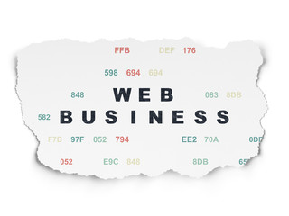 Web design concept: Web Business on Torn Paper background