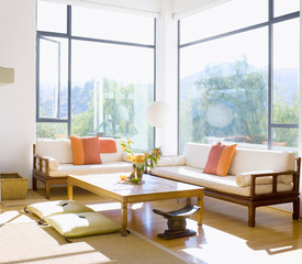 modern living room design with sofa