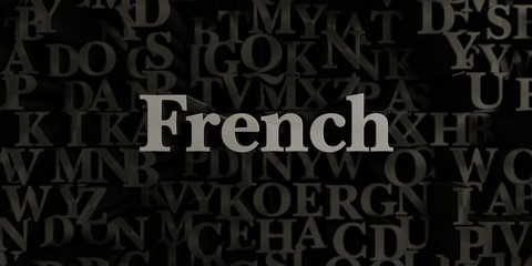 French - Stock image of 3D rendered metallic typeset headline illustration.  Can be used for an online banner ad or a print postcard.