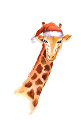 Christmas giraffe in red santa's hat. Watercolor animal