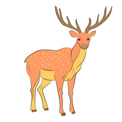 Hand Drawn Spotted Reindeer.  Cute Deer Isolated on White. Flat Style. Vector Illustration.