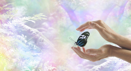 Innocent Moment of Pure Joy - Female hands gently cupped around a resting butterfly with a faded rainbow bokeh effect woodland nature scene in the background and copy space on left