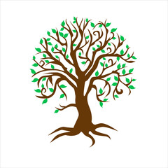 albero quattro stagioni