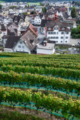 Overview on the central square of Sarnen on the Swiss Alps