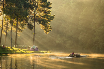 Lighting In the winter morning, Pang Ung Forestry Plantations, Mae Hong Son Province, North of Thailand.