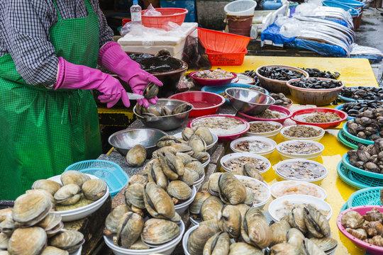 Fresh fish and seafood at Jagalchi Fish market, Busan, South Korea.