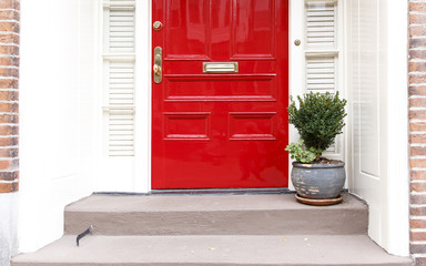residence front entrance. sleek design. red door and potted plant on the stairs Fototapete