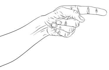 Finger pointing hand, detailed black and white lines vector illu