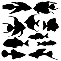 Set of black silhouettes of fish. Vector illustration