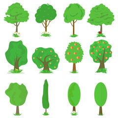 Vector collection of green trees isolates on white background.
