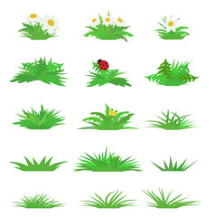 Vector flat grass set isolated on white background.