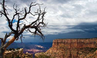 Beautiful overview of majestic Grand Canyon during storm