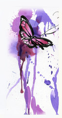 butterfly drawn with a pencil,brush and watercolor
