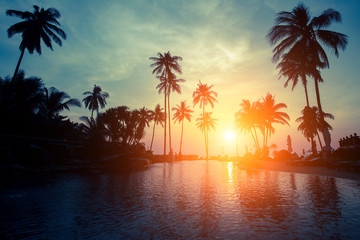 Magical sunset on a tropical beach with silhouettes of palm trees.