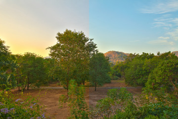 nature view and hdr filter-Half image editing process