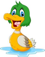funny baby duck cartoon