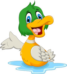 funny baby duck cartoon posing