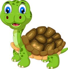 cut cartoon turtle