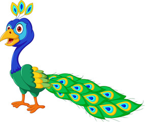 cute Peacock cartoon standing