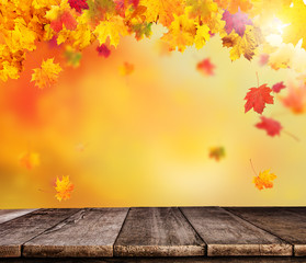 Abstract blur autumn background with wooden planks