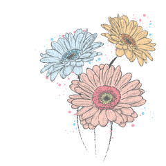 Beautiful gerbera. Vector illustration for a card or poster, print on clothes. Flowers.
