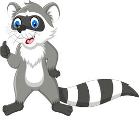 raccoon cartoon thumb up