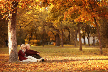 Lovely mature couple sitting under tree in autumn park