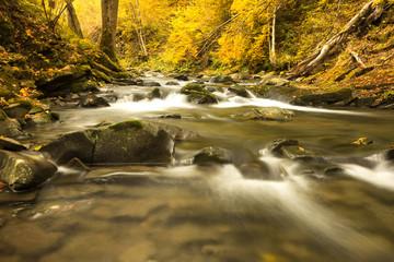 Autumn River./ Bieszczady, Poland