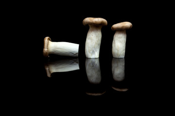 Three king oyster mushrooms, two upright and one lying isolated