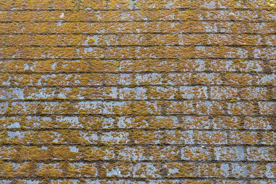 Shingle roof with molds and algaes on the surface.