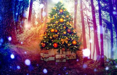christbaum zu weihnachten im wald