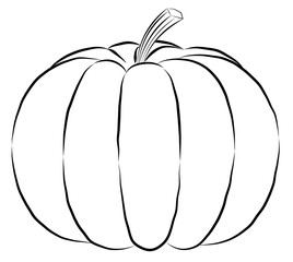 outline pumpkin black fine lines and spine Vector black silhouette.