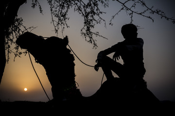 silhouette of a camel and its rider in Pushkar Desert, India