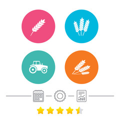 Agricultural icons. Wheat corn or Gluten free signs symbols. Tractor machinery. Calendar, cogwheel and report linear icons. Star vote ranking. Vector