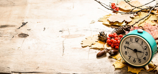 Old alarm clock with autumn leaves , cones and berries