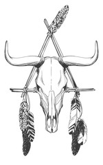 Bull skull with feathers and dreamcatcher.