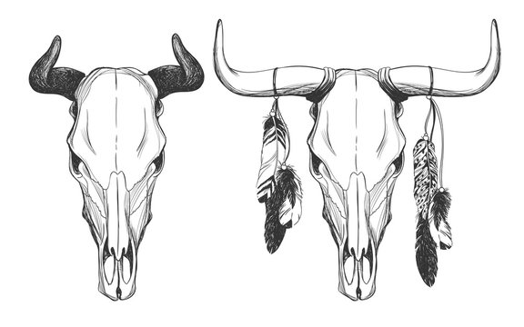 Bull skulls with feathers.
