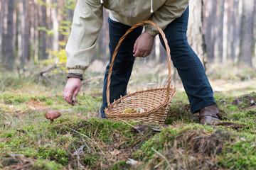 Woman picking mushroom during mushrooming.