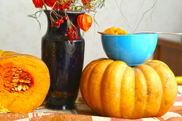 autumn cut pumpkin still life with phisalis