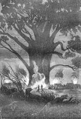 Large fires, vintage engraving.