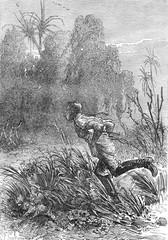 Soldier explorer running through a jungle in South Africa. A dem