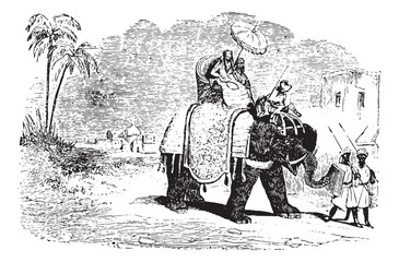 Tourists on an elephant ride, vintage engraving.