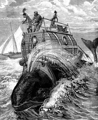 Frontispiece to travel back whale story illustrates, published b