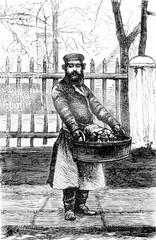 The fruit vendor, vintage engraving.
