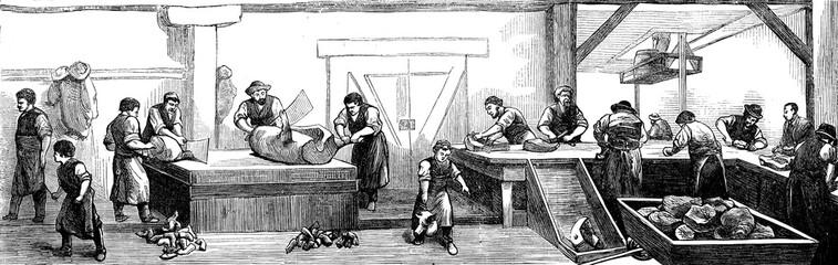 Deli Cincinnati. The slaughter of pigs, vintage engraving.