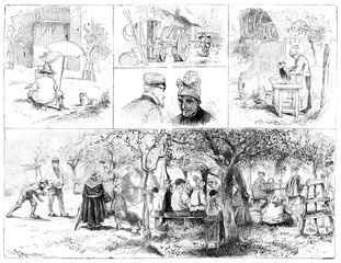Harvest Normandy cider. Types and tables, vintage engraving.